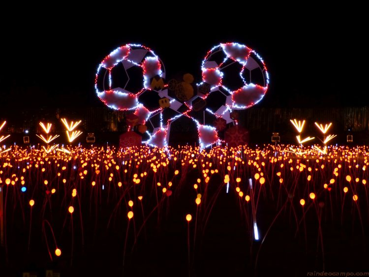 Nuvali Festival of Lights 2018 Features Dancing Tulips and a Disney-Themed Spectacle