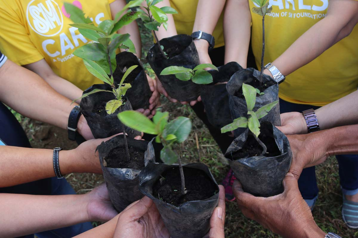 Tagaytay Highlands Advocates 'One Tree At A Time'