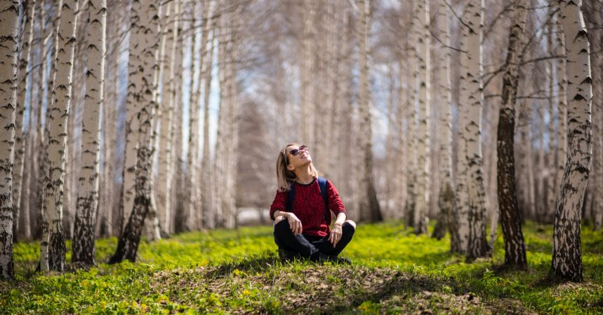 The Health Benefits of Forest Bathing