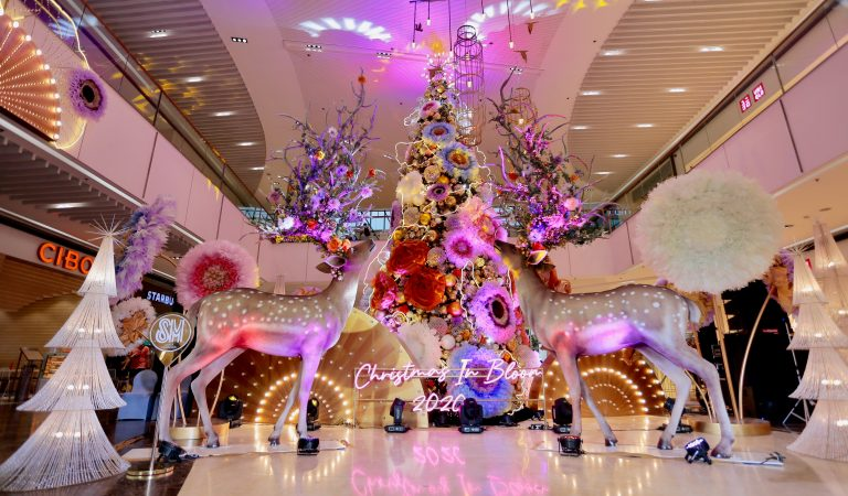 Why It's Safer To Shop At Malls This Christmas – SM
