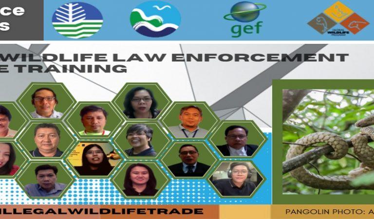 DENR Launches Online Wildlife Law Education