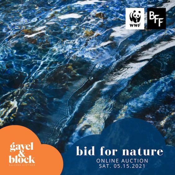 bid for nature