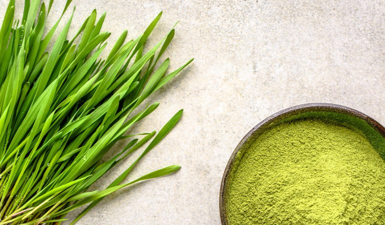 BARLEY GRASS |Nature's Super Food for Better Health