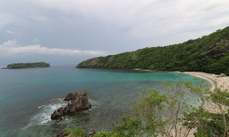How Hamilo Coast Safeguards Its Marine Biodiversity
